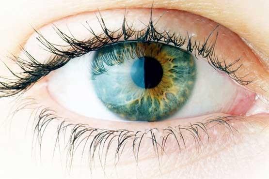 تصویر از برای داشتن چشمانی قوی و تیزبین چه خوراکی باید بخوریم؟