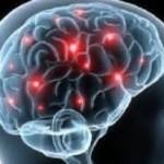 سلامت مغز در گرو چه ورزشی است؟