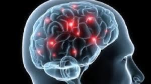 تصویر از سلامت مغز در گرو چه ورزشی است؟