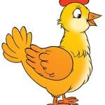 حکایت ضربالمثل «مرغی که تخم طلا میگذاشت، مرد» را میدانید؟