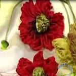 آموزش گل شقایق