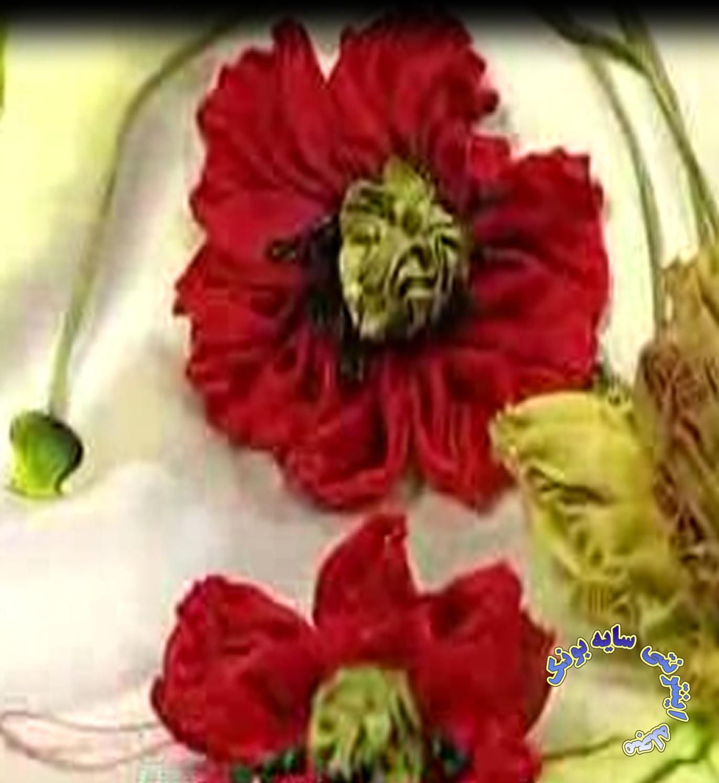 تصویر از آموزش گل شقایق