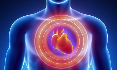Photo of قلب تان چند سال دارد؟