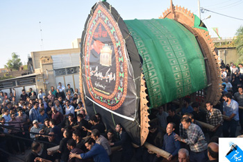 تصویر از آئین نخل برداری و نخل بندی در استان یزد/نخل برداری در میبد