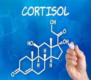 تصویر از ۹ نشانه افزایش هورمون استرس (کورتیزول) در بدن