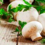 خواص قارچ؛ ۱۰ خاصیتی که این خوراکی خوشمزه را دوستداشتنیتر میکند