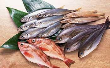 تصویر از با چه روشهایی ماهی تازه را تشخیص دهیم