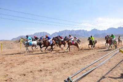 تصویر از برگزاری هفدهمین دوره از مسابقات سراسری اسبدوانی کورس بهاره کشور در یزد