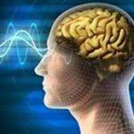 ورزش از جمله شیوه های پیشگیری از ابتلا به بیماریهای مغز و اعصاب و ستون فقرات است / استرس اصلی ترین عامل بروز بیماریهای مغز و اعصاب