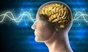 تصویر از ورزش از جمله شیوه های پیشگیری از ابتلا به بیماریهای مغز و اعصاب و ستون فقرات است / استرس اصلی ترین عامل بروز بیماریهای مغز و اعصاب