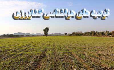 تصویر از توصیه های هواشناسی کشاورزی به کشاورزان و دامپروران