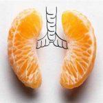 برای پاکسازی موثر ریه ها، ۱۱ گام غذایی بردارید