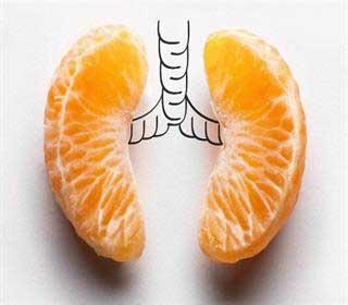 Photo of برای پاکسازی موثر ریه ها، ۱۱ گام غذایی بردارید