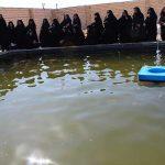 بازدید بانوان میبدی از استخر پرورش ماهیان گرمابی و زینتی در شهیدیه میبد