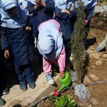کاشت نهال دانش آموزان دبستان ابطحی میبد