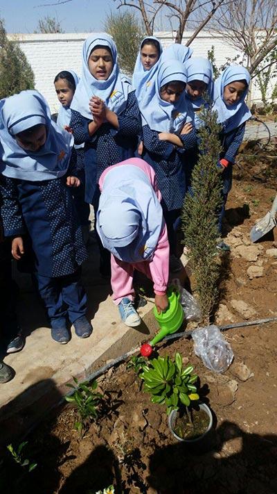 Photo of کاشت نهال دانش آموزان دبستان ابطحی میبد