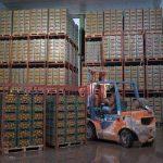 ذخيره سازي بيش از ۹۰ درصد سهميه تعيین شده ميوه استان یزد برای توزیع در بازار