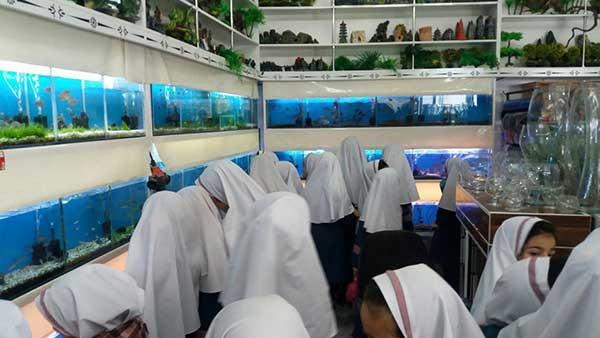 تصویر از تصاویری از برگزاری دومین جشنواره ماهیان زینتی در شهرستان میبد
