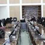 چهارمین نشست کمیته مشورتی بانوان میبد / نقش موثر بانوان در حهت پیشگیری از آسیبهای اجتماعی