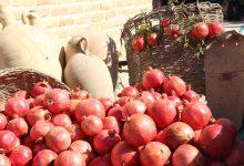تصویر از اولین جشنواره انار میخوش در میبد آغاز به کارکرد