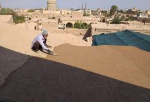 تصویر از تصاویری از مرمت مسجد جامع میبد